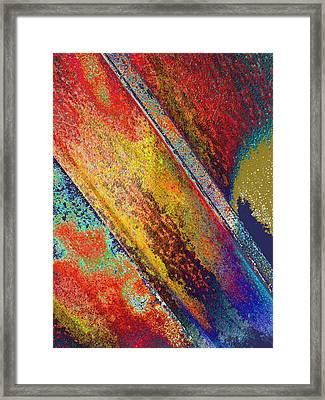 Zest Framed Print by Tom Druin