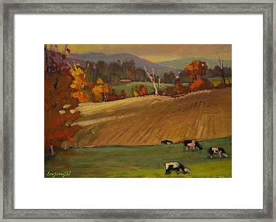 Ziemba Farm Framed Print
