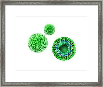 Zika Virus Framed Print by Gunilla Elam