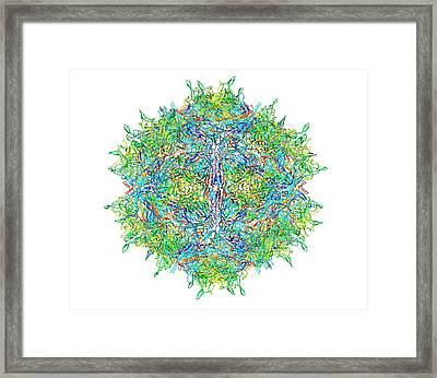 Zika Virus Particle Framed Print by Alfred Pasieka