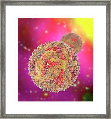Zika Virus Particle Framed Print by Ramon Andrade 3dciencia