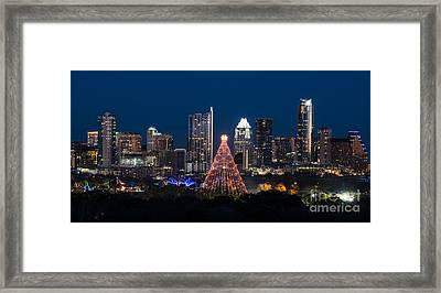 Zilker Christmas Tree  Framed Print by Tod and Cynthia Grubbs