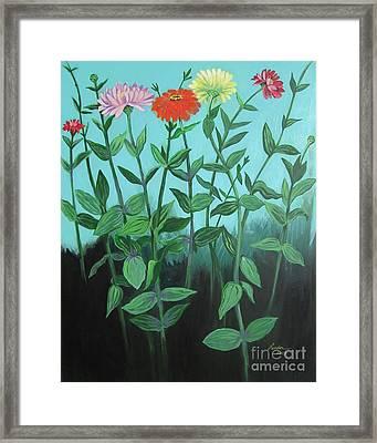 Zinnia Parade Framed Print