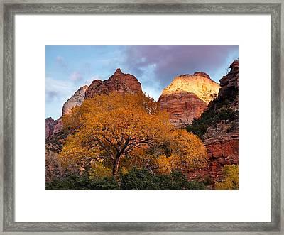 Zion Cliffs Autumn Framed Print by Leland D Howard
