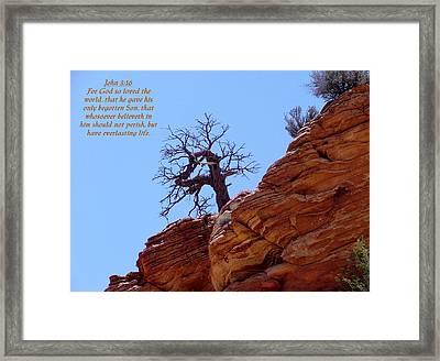 Zion John 3-16 Framed Print