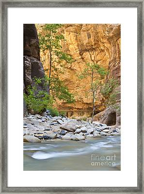 Framed Print featuring the photograph Zion Narrows by Bryan Keil