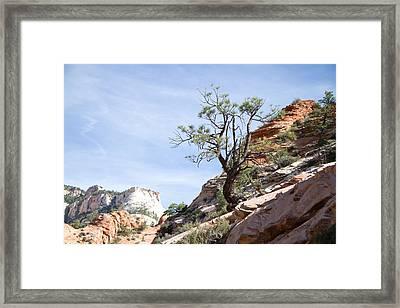 Zion National Park 1 Framed Print