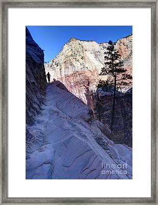 Zion National Park Hiker Climbs Hidden Canyon Trail Framed Print by Gary Whitton