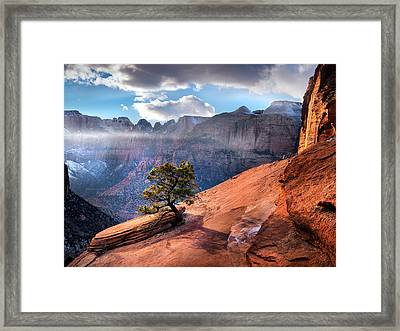 Zion National Park Light Framed Print by Leland D Howard
