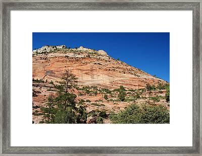 Framed Print featuring the photograph Zion National Park by Robert  Moss