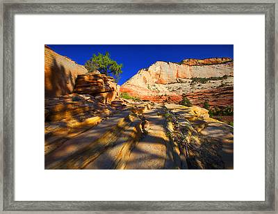 Framed Print featuring the photograph Zion National Park Usa by Richard Wiggins