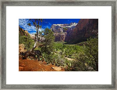 Framed Print featuring the photograph Zion National Park River Walk by Richard Wiggins