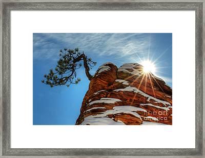 Zion National Park Sacred Earth 2 Framed Print