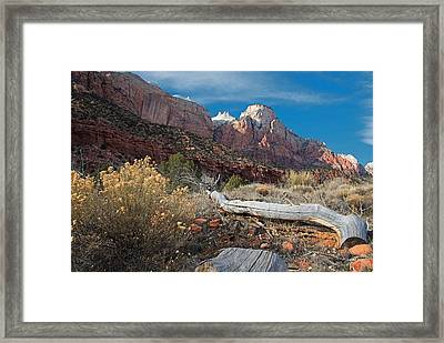 Zion's Allure Framed Print