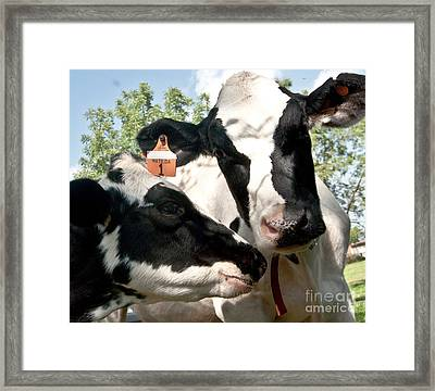 Zoey And Matilda Framed Print