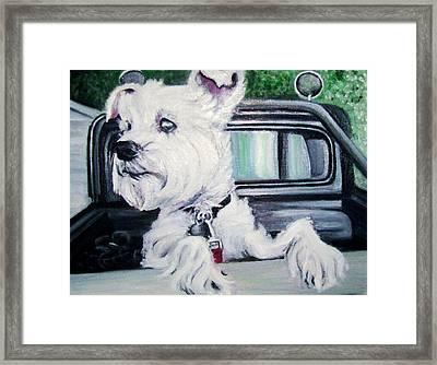 Zoey Waits For A Ride Framed Print