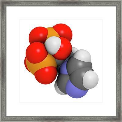 Zoledronic Acid Osteoporosis Drug Framed Print by Molekuul