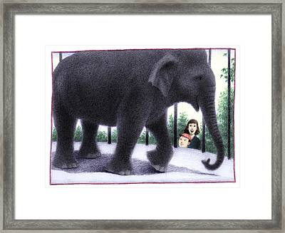 Zoo Elephant Framed Print by Steve Dininno