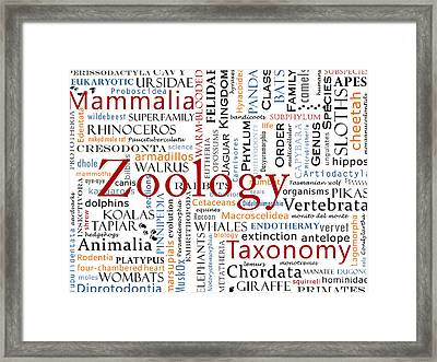 Zoology 1 - Mammals In Typography Framed Print