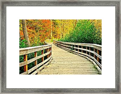 Zoom Zoom Walking Path Framed Print by Frozen in Time Fine Art Photography
