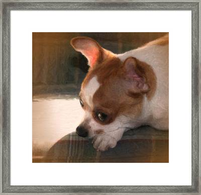 Zora Framed Print by Posey Clements