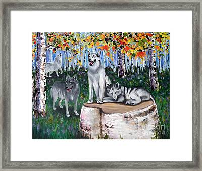 Zorros Wolves Amid The Aspens Framed Print