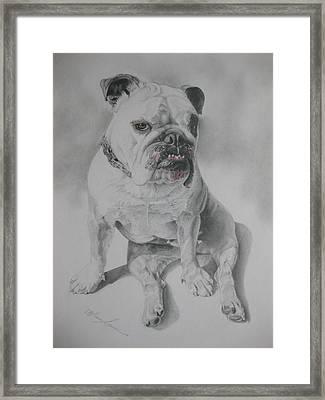 Zsu Zsi Framed Print by Melanie Spencer