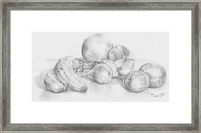 Summer Fruit Framed Print by Trudy Brodkin Storace