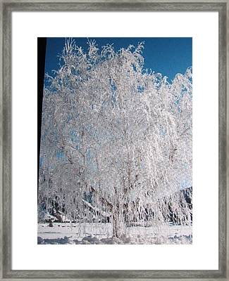 Framed Print featuring the photograph -32 Degrees by Shawn Hughes
