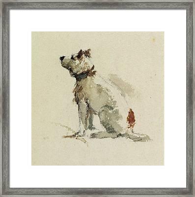 A Terrier - Sitting Facing Left Framed Print by Peter de Wint