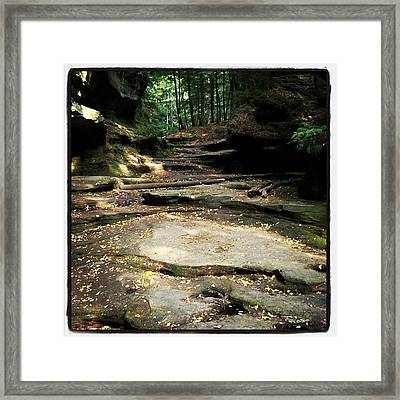  Framed Print by  Abril Andrade Griffith