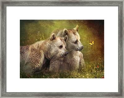 Bear Hugs Framed Print by Trudi Simmonds