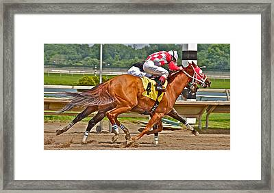 Framed Print featuring the photograph  Betting On Number Four by Alice Gipson
