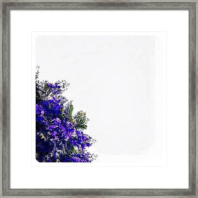 Corner Bouquet Framed Print