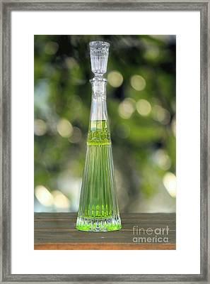 Elixir Framed Print by Sophie Vigneault