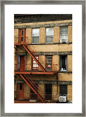 Fire Escapes - Nyc Framed Print
