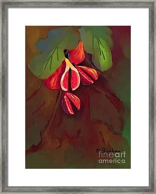 Five Figs Framed Print