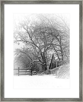 Flurries Framed Print by Robin-Lee Vieira