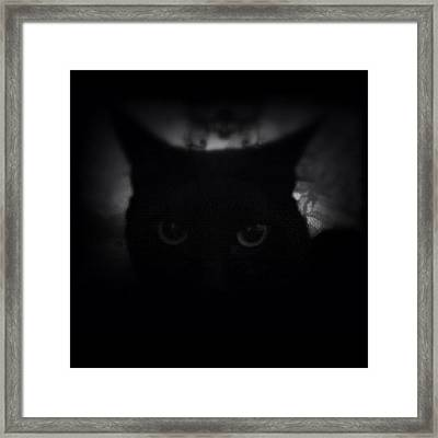 ♞ #ig_m || Luna ||| Framed Print by M M