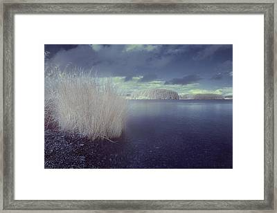 Infrared At Llyn Brenig Framed Print