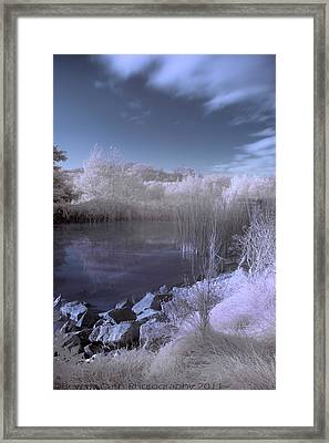 Infrared Pond Framed Print
