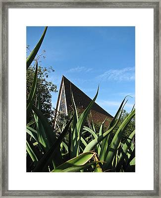 Isla Vista California Framed Print by Ian Stevenson