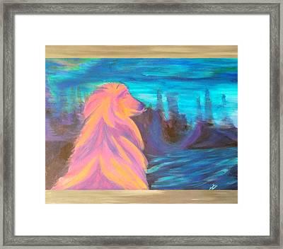 Lassie Framed Print by Hatin Josee