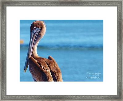 Look At You Framed Print