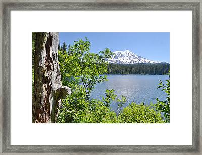 Mount Adams Framed Print by Ansel Price