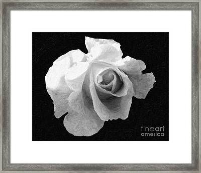 My Forgotten Rose Framed Print by AHcreatrix