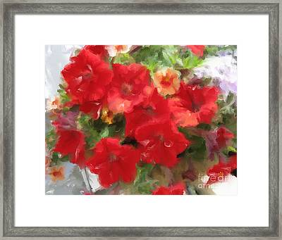 Red Petunia Framed Print