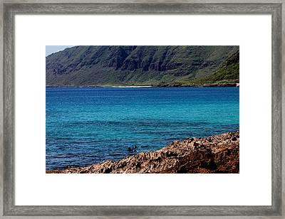 Relaxing On Oahu Framed Print