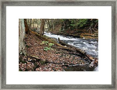 River Below Grayville Falls 2 Framed Print