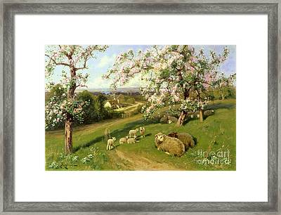 Spring - One Of A Set Of The Four Seasons  Framed Print